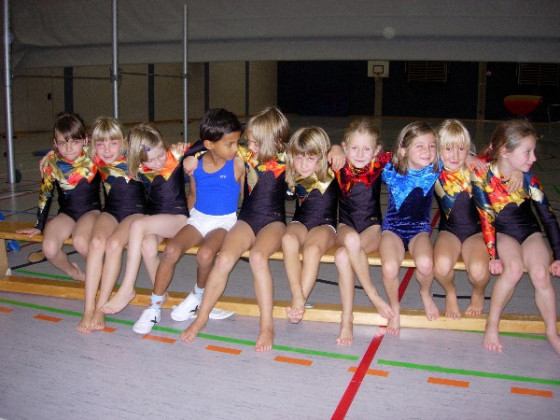 Schauturnen 2008